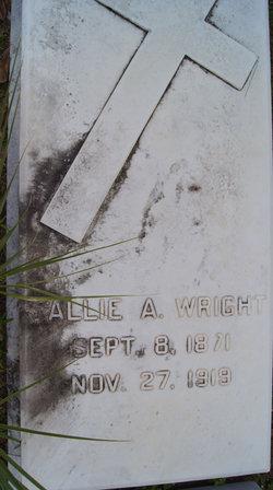 Sallie Ann Wright