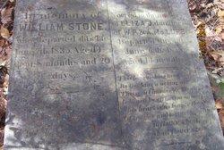 Eliza J. McLure