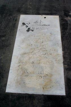 Annie Ellen Tierney