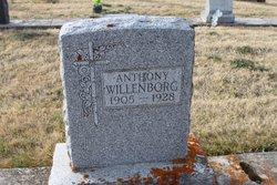 Anthony Willenborg
