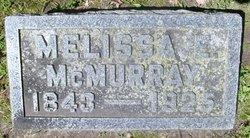 Melissa E McMurray
