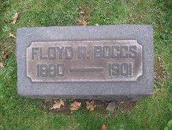 Floyd W. Boggs