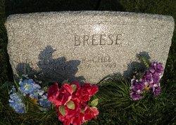 Rachel Jeanette <I>Spencer</I> Breese