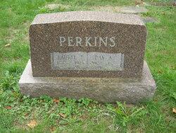 Laurel R Perkins