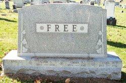Olive G Free