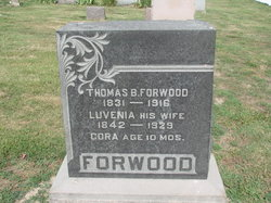 Cora Forwood