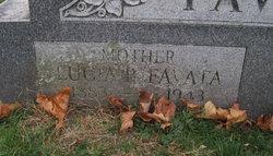 Lucia B. Favata