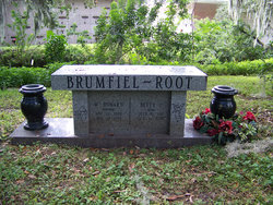 Walter Howard Brumfiel