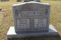 William Edward Goforth