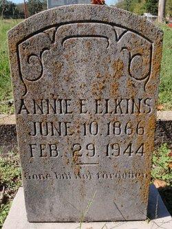 "Ann Eliza ""Annie"" <I>Stubbs</I> Elkins"
