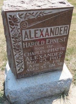 Harold Ernest Alexander