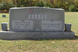 Diane Elizabeth <I>Black</I> Ellis