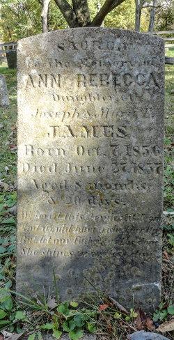 Annie Rebecca James