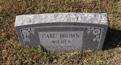 Carl Brown Wilkes