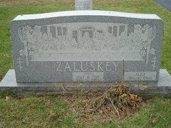 Alex Zaluskey