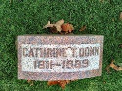 Cathrine T Donn