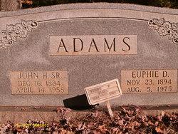 Euphie <I>Diffee</I> Adams