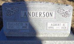 Elizabeth M Anderson