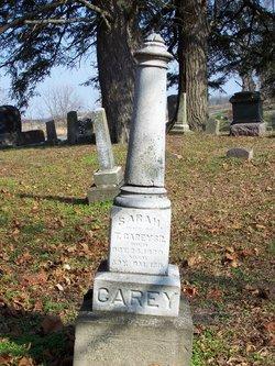 Sarah Elizabeth or  Sarah Jane <I>Porter</I> Carey