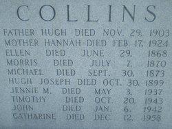 """Jane Mary """"Jennie"""" Collins"""