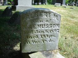 Albert M. Musson
