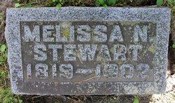 Melissa N Stewart
