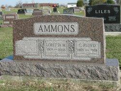 Loretta Mae <I>Krock</I> Ammons