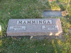 Reinder Mamminga