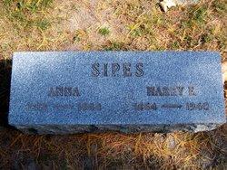 Anna Sipes