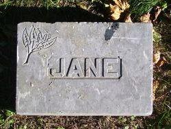 Jane A Alexander