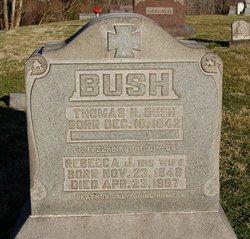 Rebecca J Bush