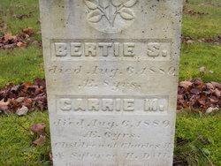 Bertie S Dill