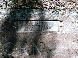 Charlie Clark Wellborn