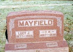 David Wilson Mayfield