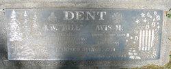 Avis M Dent