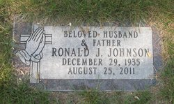 Ronald J Johnson