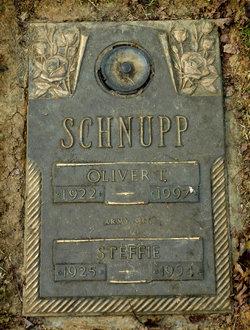 Oliver T Schnupp