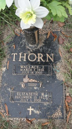 Wallace J Thorn