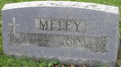 Gayle M Meley