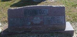 Robert J Diltz