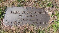 James Floyd Pedigo