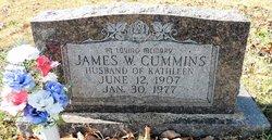 James W. Cummins
