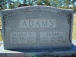 Susan P <I>McLeod</I> Adams