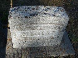 Esther Lenora <I>Brown</I> Biegert