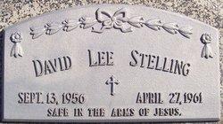 David Lee Stelling