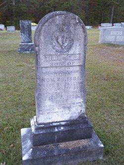 Thomas B Matthews