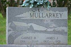 Garnet H Mullarkey