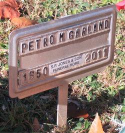Petro M Garland