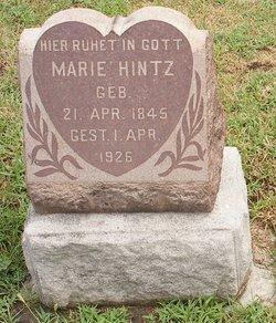 Marie Hintz