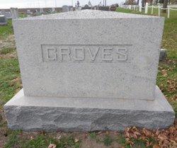 Hannah Berry <I>Hitt</I> Groves